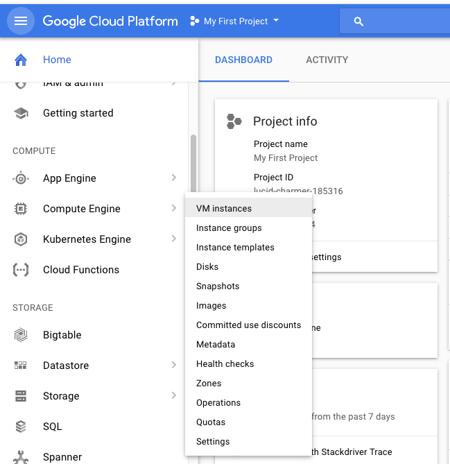 Install and Run in a Docker Container on Google Compute