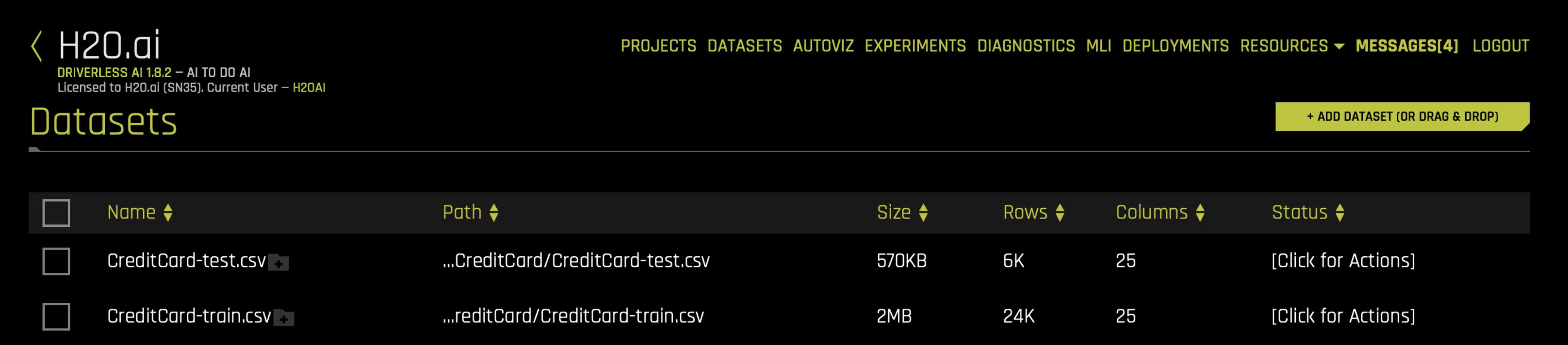 Credit Card Demo — Using Driverless AI 1 7 0 documentation